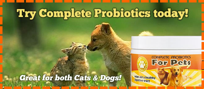 promo-furchild-dr-mercola-probiotics-product-cats-dogs