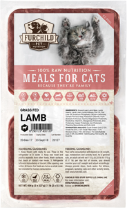 Cat Lamb