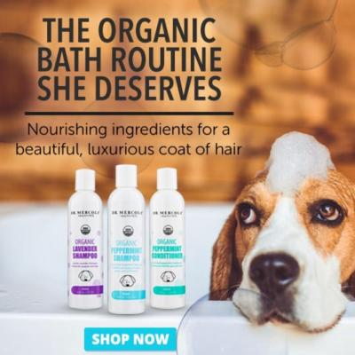 Dr. Mercola Dog Shampoo Products and Knowledge