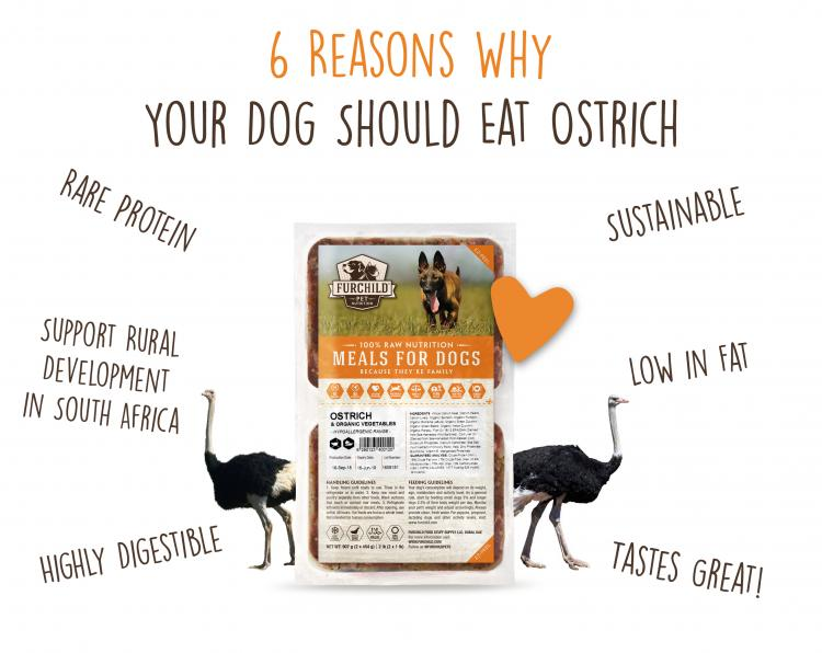 6 Reasons Why Your Dog Should Eat Ostrich