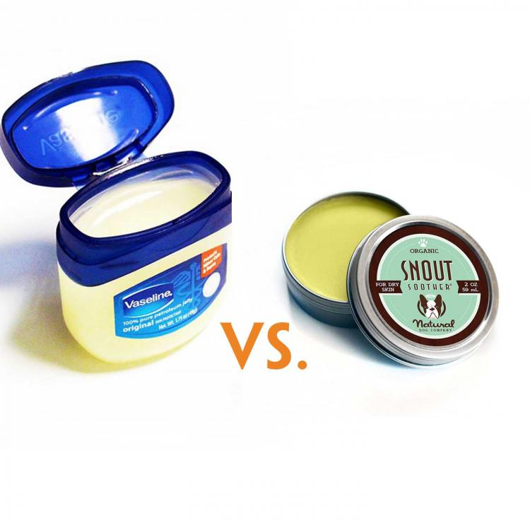 Is it Okay to Use Vaseline for a Dog's Nose? Snout Soother Vs. Vaseline.