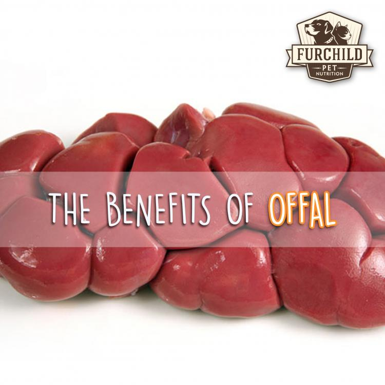 The Benefits of Offal