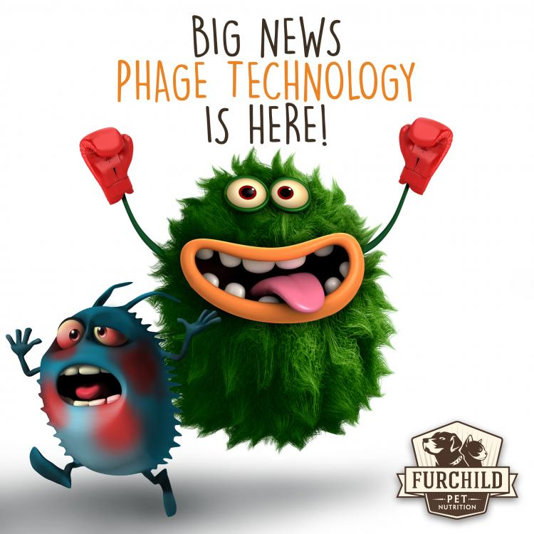 Bacteriophages - Making Pet Food Clean & Safe