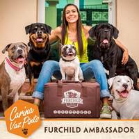 Q & A with Dog Trainer Carina Vaz Pinto