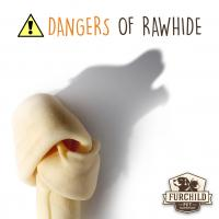 4 Reasons Why Rawhide is Dangerous