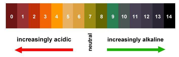 Acid-Alkaline Scale for Pets