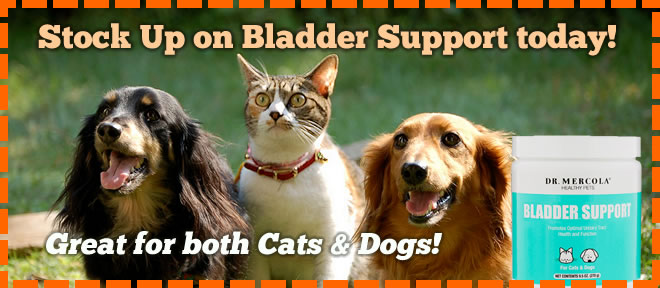 promo-furchild-dr-mercola-bladder-support-product-cats-dogs