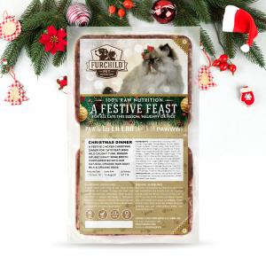A FESTIVE FEAST - COMING SOON!