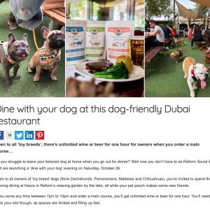 Dine with your dog at this dog-friendly Dubai restaurant.
