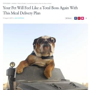 Your Pet Will Feel Like a Boss Again With This Meal Plan Delivery