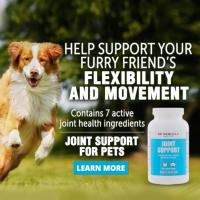 JOINT SUPPORT - DOGS & CATS